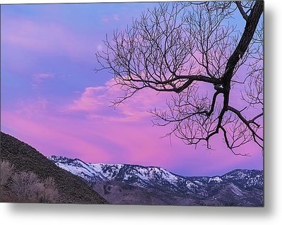 Metal Print featuring the photograph Fading Winter Moon by Nancy Marie Ricketts