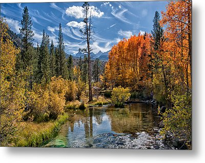 Fall At Bishop Creek Metal Print by Cat Connor