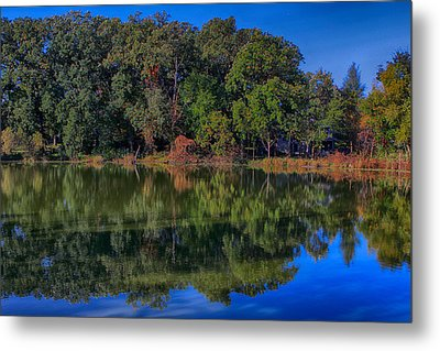 Fall Colors Metal Print by Jerome Lynch