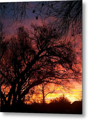 Fall Fire Metal Print by Roseann Errigo