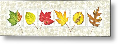 Fall Leaf Panel Metal Print by Jon Q Wright