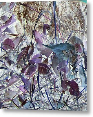 Fall Leaves Metal Print by Larry Campbell