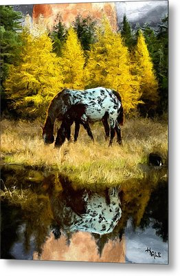 Fall Reflections Metal Print by Roger D Hale