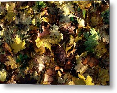 Fallen Leaves Metal Print by Ron Harpham