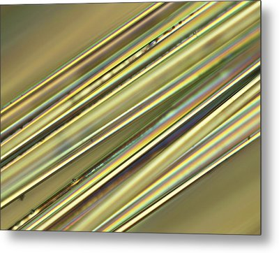 Fibreglass, Light Micrograph Metal Print by Science Photo Library