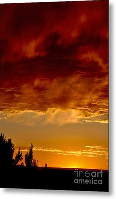 Metal Print featuring the photograph Fire In The Sky by Gina Savage