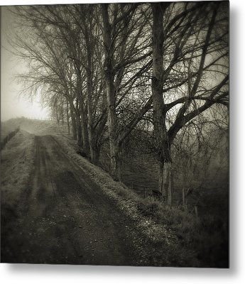 Foggy Trail Metal Print by Les Cunliffe