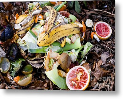 Food Waste On Compost Heap Metal Print