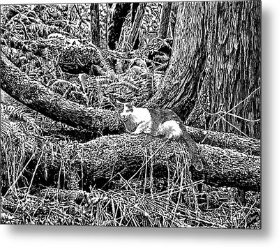 Forest Cat Metal Print by Artellus Artworks
