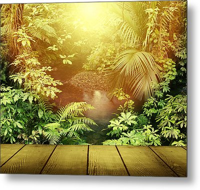 Forest Light Metal Print by Les Cunliffe