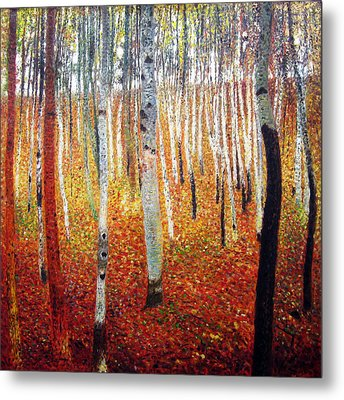 Forest Of Beech Trees Metal Print