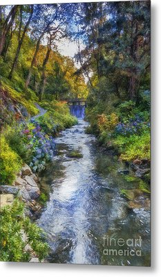 Forest Stream Metal Print by Ian Mitchell