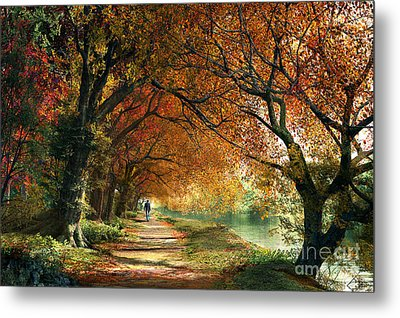 Forever Autumn Metal Print by Dominic Davison