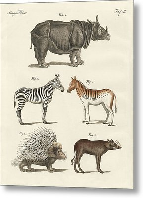 Four-footed Animals Metal Print by Friedrich Justin Bertuch