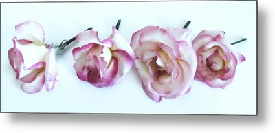 Four Roses Metal Print by Marianna Mills
