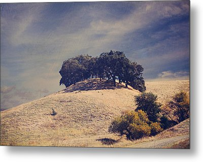 From On High Metal Print by Laurie Search