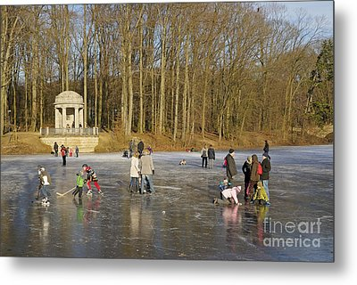 Frozen Lake Krefeld Germany. Metal Print by David Davies