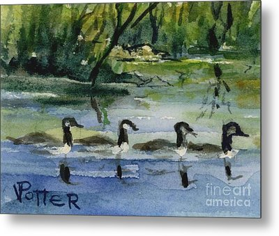 Geese In A Row Aceo Metal Print by Virginia Potter