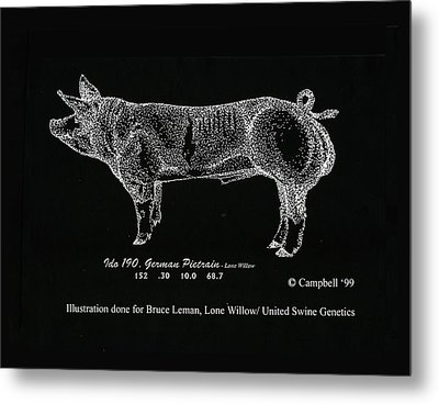 Metal Print featuring the drawing German Pietrain Boar by Larry Campbell