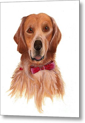 Metal Print featuring the painting Golden Labrador by Nan Wright