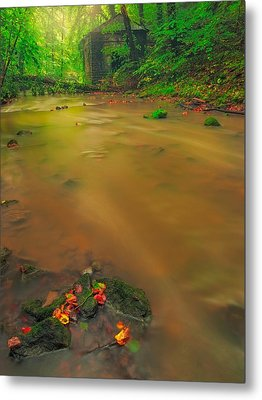 Metal Print featuring the photograph Golden River by Maciej Markiewicz