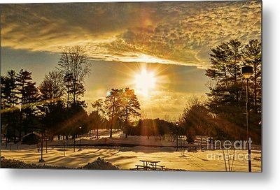 Metal Print featuring the photograph Golden Sunset by Brenda Bostic