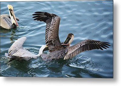 Gotcha Metal Print by Paulette Thomas