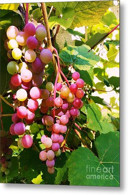 Metal Print featuring the photograph Grapes by Rose Wang