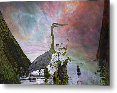 Great Blue Heron In A Heavenly Mist Metal Print by J Larry Walker