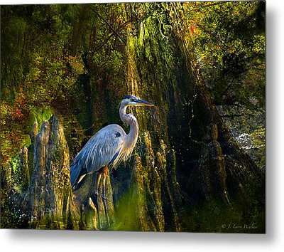 Metal Print featuring the digital art Great Blue Heron Slowly Strolling by J Larry Walker