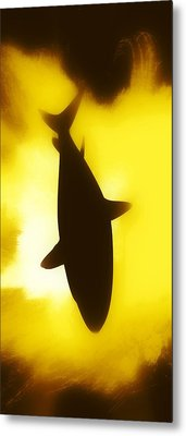 Metal Print featuring the digital art Great White  by Aaron Berg