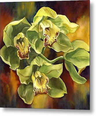Green Cymbidium Orchid Metal Print