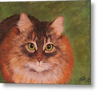 Green Eyed Kitty Metal Print by Janet Greer Sammons