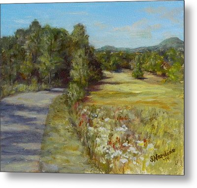 Greenville Road Metal Print by Sandra Nardone