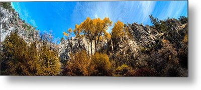 Metal Print featuring the photograph Guardians by David Andersen