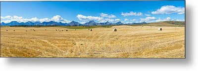 Hay Bales In A Field With Canadian Metal Print