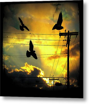 Here Comes The Sun Metal Print by Gothicrow Images