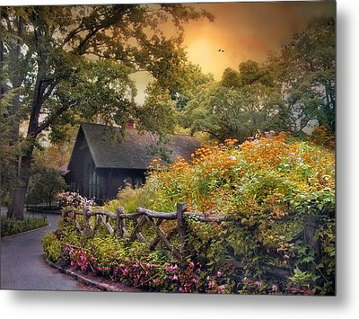 Metal Print featuring the photograph Hidden Charm by Jessica Jenney