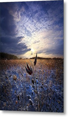 Holding On Metal Print by Phil Koch