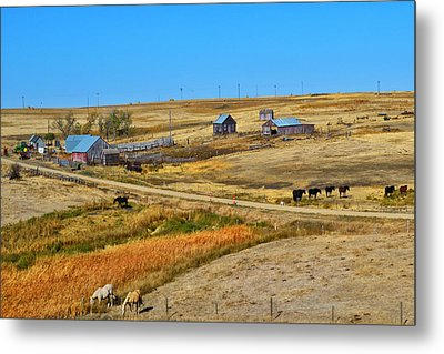 Home On The Range Metal Print by Kelly Reber