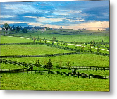 Horse Country Metal Print by Alexey Stiop