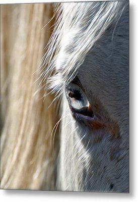 Horse Eye Metal Print by Savannah Gibbs