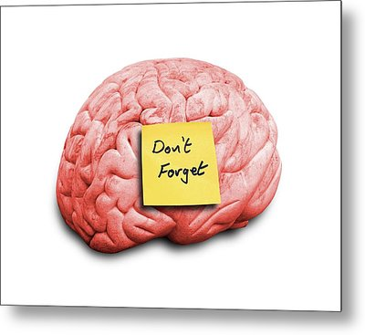 Human Brain With An Adhesive Note Metal Print