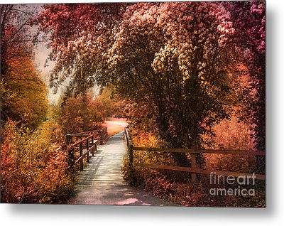 In A Park Metal Print by Svetlana Sewell