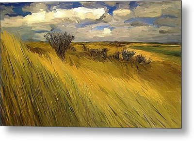 Iowa Prairie Grasses  Metal Print by Randy Sprout