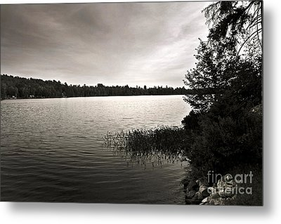 Metal Print featuring the photograph Jacob Buck Pond by Paul Cammarata