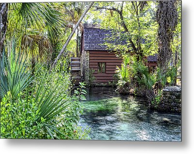 Juniper Springs Metal Print by Bob Jackson