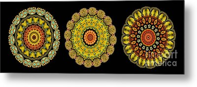 Kaleidoscope Ernst Haeckl Sea Life Series Triptych Metal Print by Amy Cicconi
