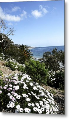Laguna Beach  Metal Print by Timothy OLeary