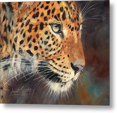 Leopard Metal Print by David Stribbling